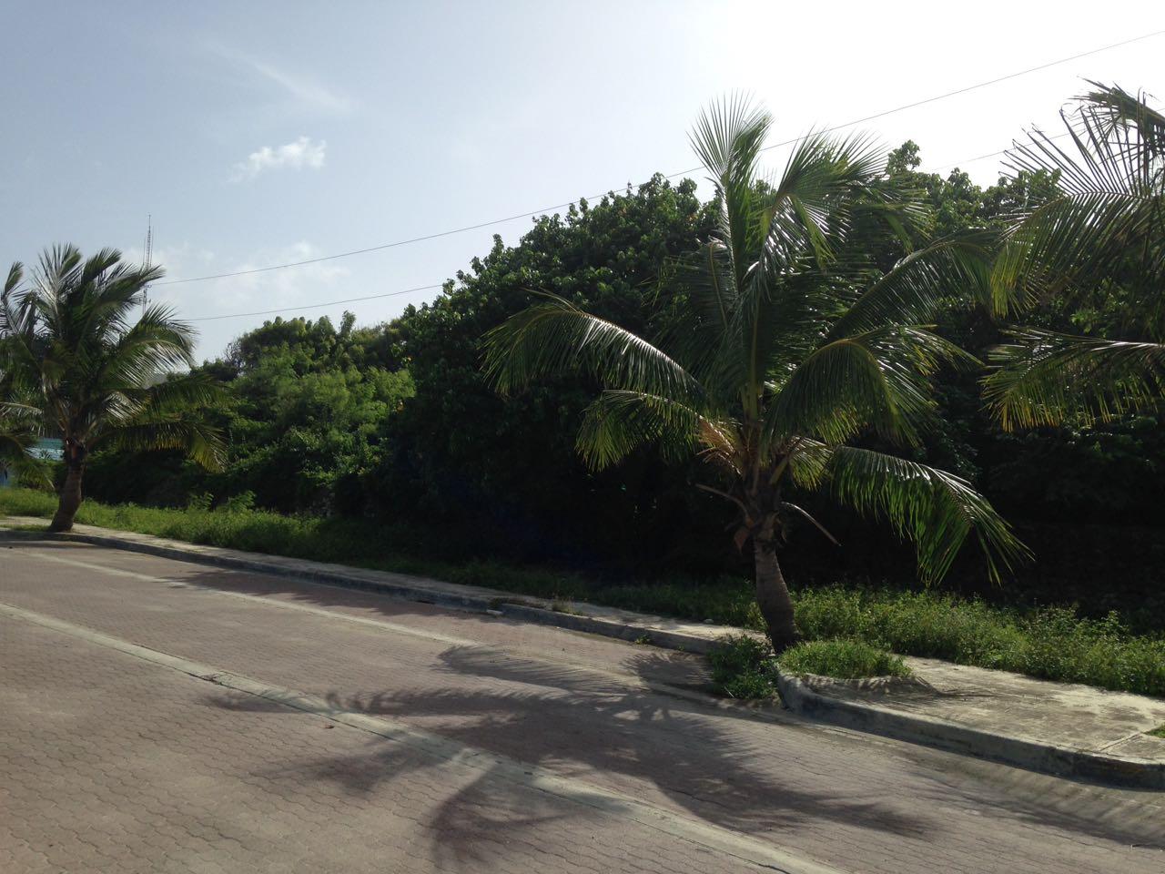 Solar en Andres Boca Chica