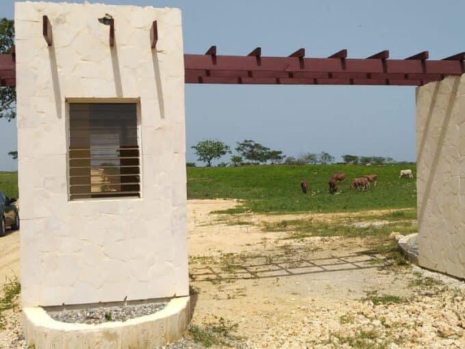 Solares y terrenos en Boca Chica residencial los beisbolistas texas ranger baseball academy playa de boca chica 1 jubey boca chica